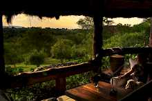 Veranda mit Ausblick in den Urwald in Semliki Safari Lodge
